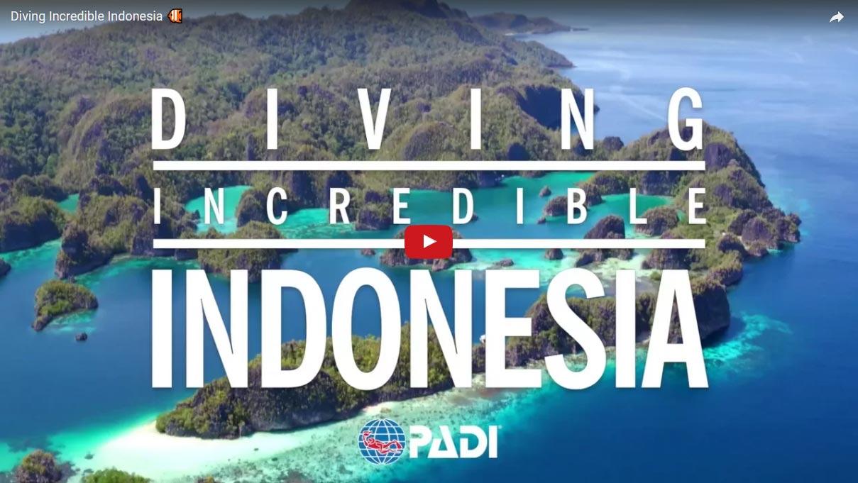 diving-incredible-indonesia-PADI-ecodivebali